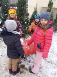 První sníh (15)