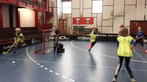 Tatran cup 2019 (3)
