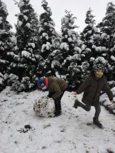 2021 - Konečně sníh! (19)