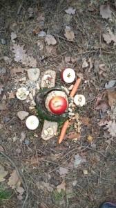 2.B - vánoce v lese (6)
