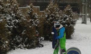 Delfíni, Lvíčata a Bubliny na sněhu (15)