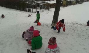 Delfíni, Lvíčata a Bubliny na sněhu (6)