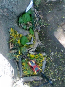 Podzim na školní zahradě  (4)